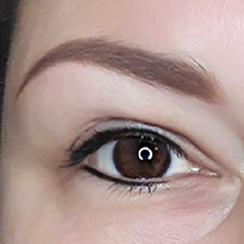 Our Services Brow Ink Soft Ombre Powder Brows
