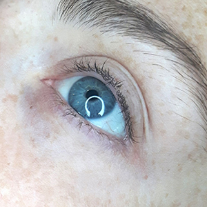 Brow Ink Permanent Cosmetics Before Lash Lift and Tint